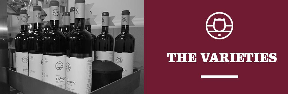 lacovino winery krasia wines ta-krasia-mas